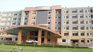 Directorate of Health services